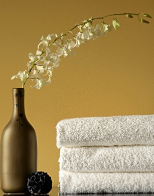 Bathroom paints in blues and beyond - Popular gold paint colors ...